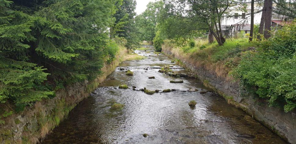 potok lipova-lazne